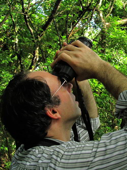 VACACIONES EN ECUADOR: Ecuador Amazon birding expedition