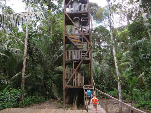 VACACIONES EN ECUADOR: The Cuyabeno Canopy Tower.