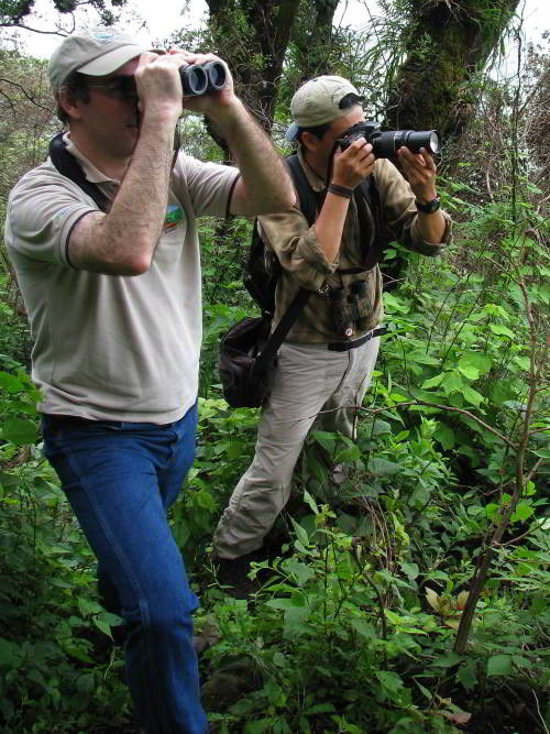 VACACIONES EN ECUADOR: Birdwatchers on Amazon Expedition in Ecuador