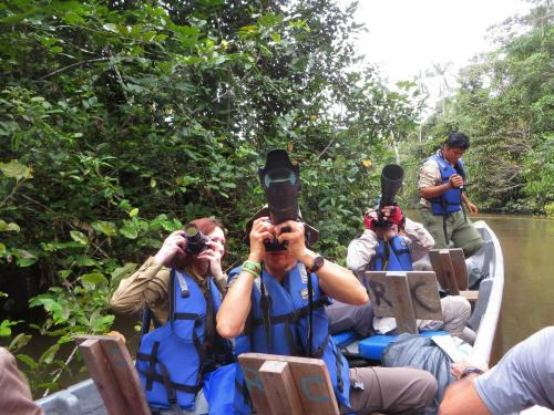 OERWOUD ZUID AMERIKA [ECUADOR]: great wildlife exploring!