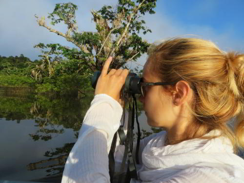 8 BEST AMAZON TOURS IN ECUADOR [FOR WILDLIFE]:Birdwatching by visitors of the Amazon in Ecuador