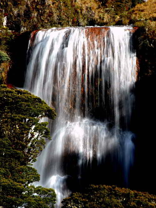 10 Cotacachi Cayapas Ecological Reserve Facts: Waterfall in the cloudforest.