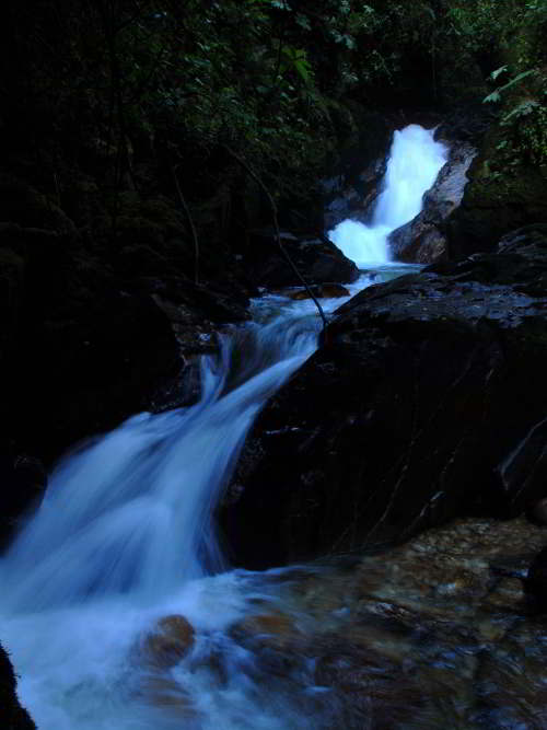 10 Cotacachi Cayapas Ecological Reserve Facts: Waterfall in the jungle.