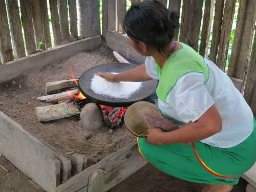 Visiting the Amazon in Ecuador: Amazon Rainforest tribal Woman prepairing manioc for visitors of the Amazon in Ecuador.