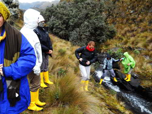 TOP 10 ADVENTURES IN BAÑOS IN ECUADOR [OUTDOORS ACTIVITIES]: Hiking in the paramos of the parks.